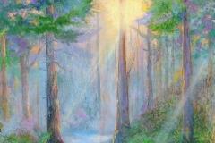 ForestCoruscation50X40WEB
