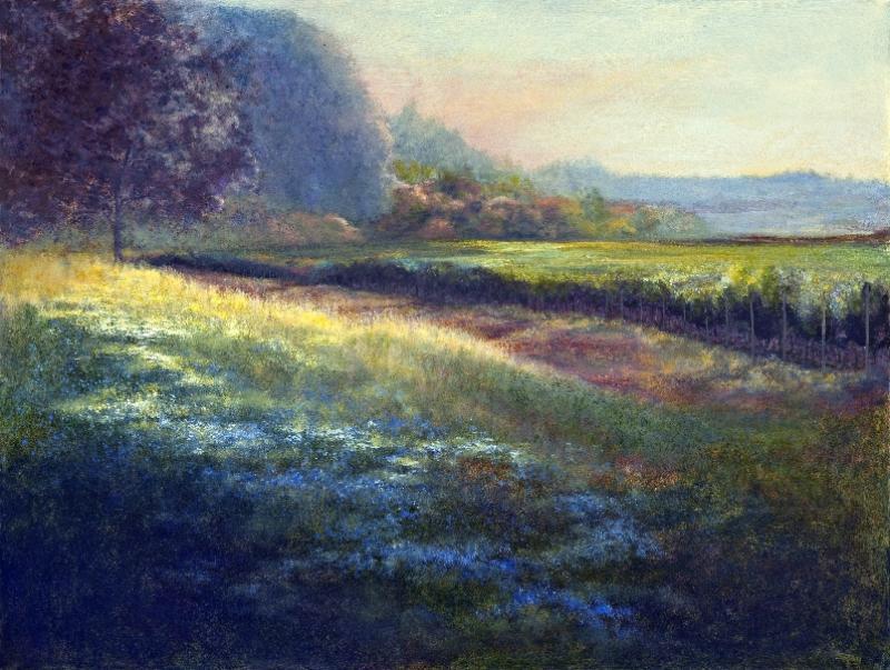 morning-meadow-1
