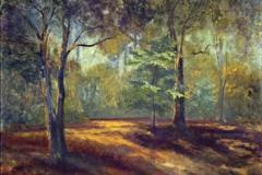 oak-grove-morning-1