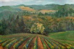 vineyard-home-1